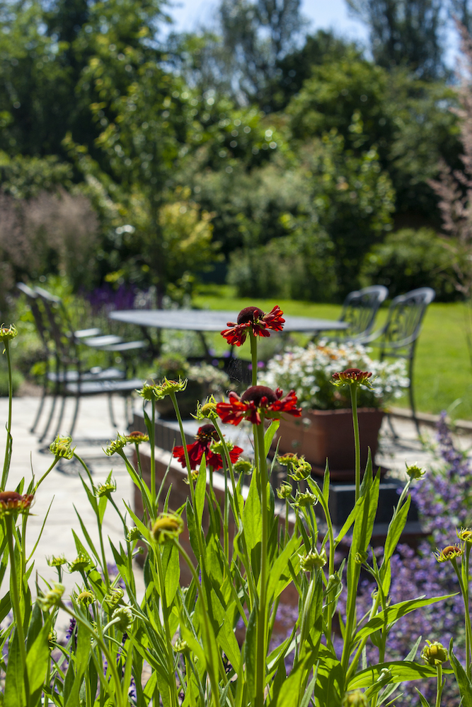 Chris Cooper Hayes Garden Design Leicestershire Warwickshire